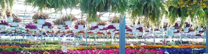 Greenhouse-growers-Header